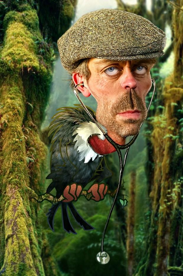 Hugh-Laurie-Old-Buzzard-caricature-helloodesigner