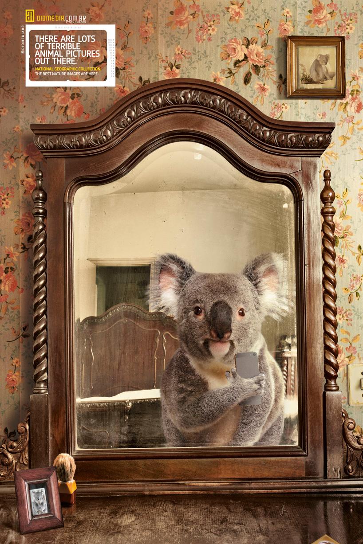national-geographic-selfie-helloodesigner4