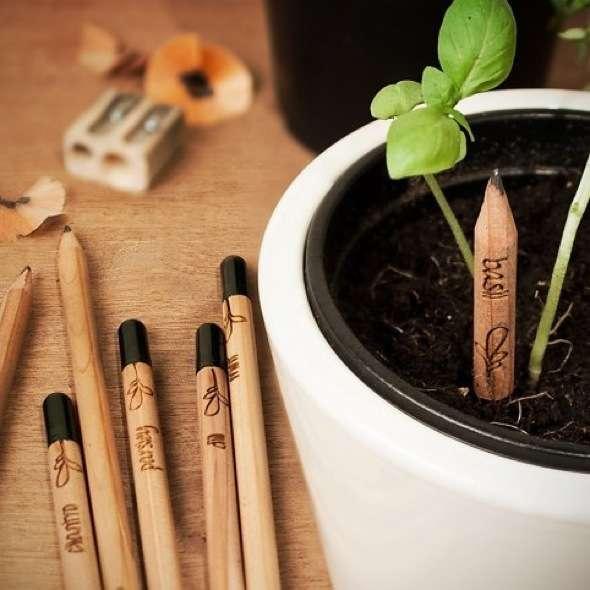 design-produit-crayon-plante