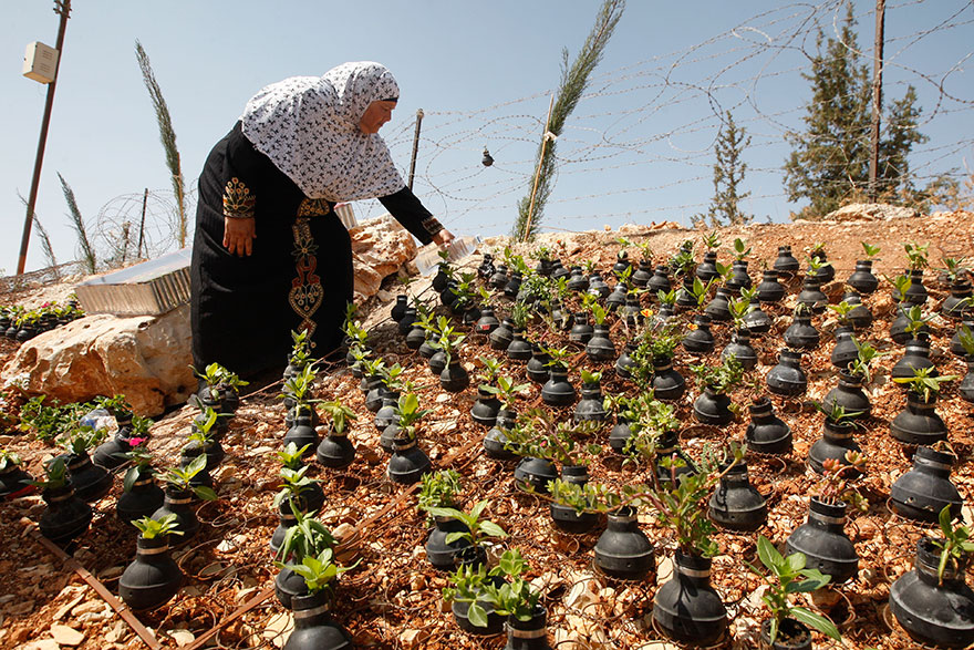 gas-flower-pots-palestine3