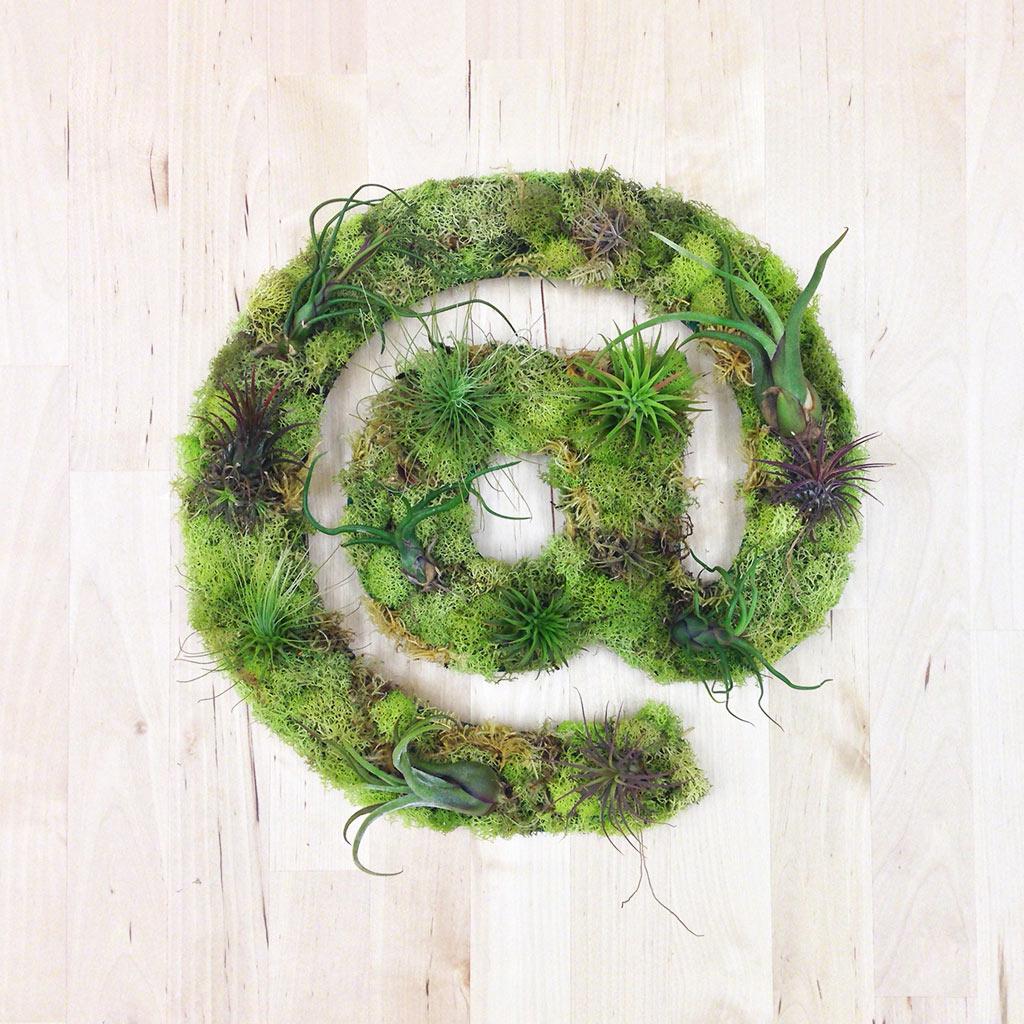 art-végétal-décoration