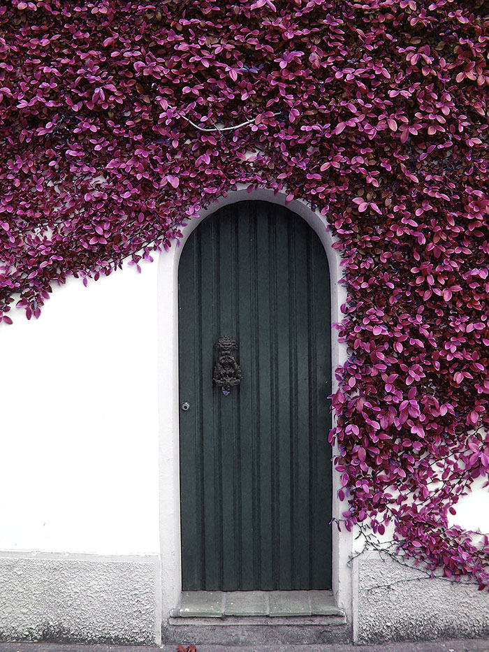 photographie portes art