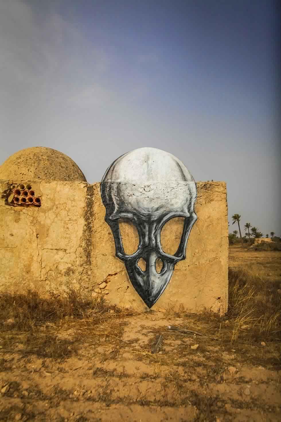 djerba-hood-djerbahood-street-art-Gallery Itinerance-streetart-roa-couole-dome