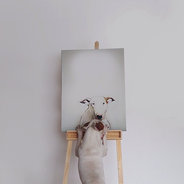 rafael-mantesso-jimmy-choo-photographie-art16